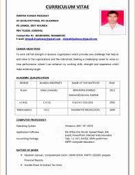 Resume International Format Elegant Sample For Abroad Download Doc