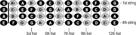 Bass Guitar Chart Notes On The Neck Of The Bass Cyberfretbass Com