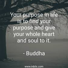 Your Purpose In Life Is To Fin By Buddha Inblix