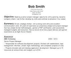 Resume Objective Management Dovoz