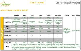Sample Food Logs Food Diary Log Journal Templates