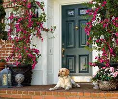 front door and house entrance design