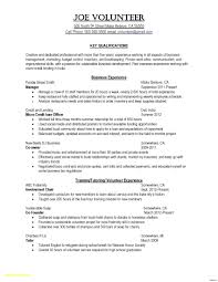Free Resume Template For Finance Word Download Mba Format Freshers
