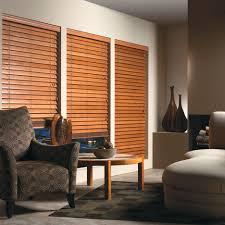 Window In Living Room Living Room Blinds Ideas Living Room Design Ideas