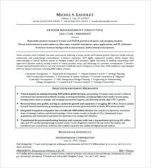 Ceo Resume Template Download Best of Ceo Resume Sample Resume Template Free Samples Examples Format