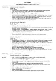 Certified Pool Operator Resume Example Templates Maintenance