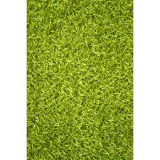 startling kelly green rug area rugs designs throughout remodel 19 redrhet com