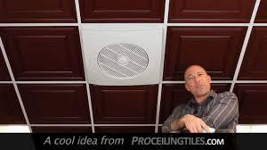 Nice Drop Grid Ceiling Fan