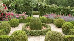 10 ways to use shrubs in your landscape