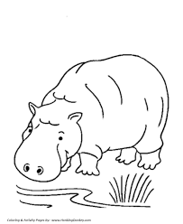 Small Picture Wild Animal Coloring Pages Hippopotamus Coloring Page and Kids