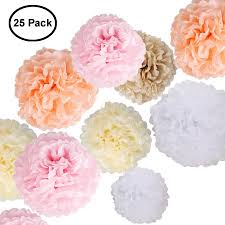 Paper Flower Tissue Paper Paper Flowers Fluffy Tissue Paper Pom Poms Hanging Flower Ball For Wedding Decor Party Celebration 25 Pcs Pink