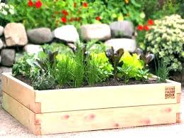 cedar raised garden bed kit plant supports home depot home depot raised garden bed raised garden