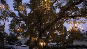 adam tenenbaum s chandelier tree