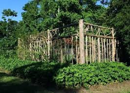 deer proof garden. Garden Vegetables Deer Wont Eat Make Your Vegetable Beautiful And Proof This Is Fabulous .