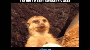 trying to stay awake meme memesuper trying to stay awake in class