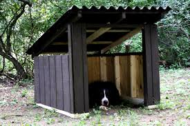 simple dog house design images