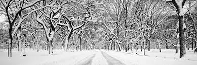 black and white snow photography. Perfect Snow Centralparksnowliterarywalkmallblackandwhite Panoramichighdefinitionhdprofessionalphotography To Black And White Snow Photography H
