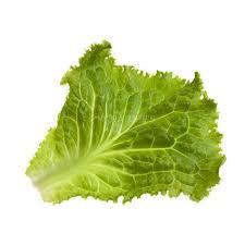 Buy Lettuce Green Leafy Vegetables At Best Price In India Godrej