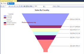 Funnel Chart In Ssrs
