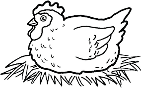 Chicken Coop Coloring Pages Chicken Coloring Page Twin Drumstick
