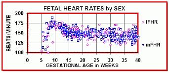 Fetal Heart Rate Week By Week Chart Heart Rate Gender Prediction The Gender Experts Pertaining