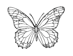 butterfly coloring book printable. Exellent Printable Printable Butterfly Coloring Page B Is For  Pages Preschool Amusing On Butterfly Coloring Book Printable L