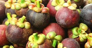 Image Result For Kerala Fruits  BEAUTIFUL KERALA  Pinterest  KeralaKerala Fruit Trees