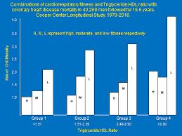 Cardiorespiratory Fitness The Triglyceride Hdl Ratio And