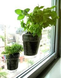 pot met 1 window herb planter diy