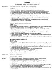Charming Security Consultant Resume Gallery Entry Level Resume