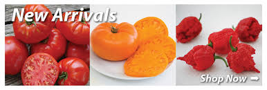 garden seed companies. Exellent Companies Garden Seed  Vegetable Catalog  Company Totally Tomato In Companies N