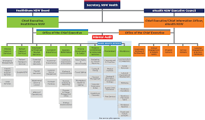 Executive Hierarchy Chart Organisation Charts Ehealth Nsw