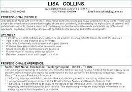 Profile Section Of Resume Resume Profile Section Examples Resume