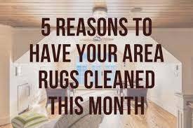 finding the perfect area rug is no easy feat and keeping it clean can be just as challenging