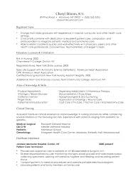 Combination Resume Template Free Magnificent Professional Combination Resume Template Word 48 Combination
