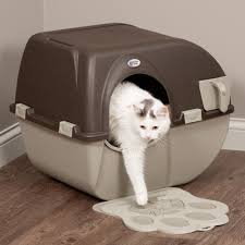 Cat Litter Boxes: Self-Cleaning Rollaway Litter Box at Drs. Foster & Smith
