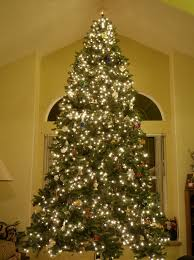 12 Ft Artificial Christmas Tree  12 Ft Artificial Christmas Trees12 Ft Fake Christmas Tree