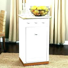 Kitchen Trash Can Ideas Cool Design