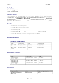 Cv Format For Experienced Professionals Heegan Times