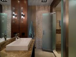 glass doors for bathrooms. Etched Glass Doors Bathroom Rustic With Ceiling Lighting Frosted Glass. Image By: Birdseye Design For Bathrooms