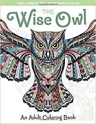 amazon the wise owl an coloring book take a break to create with color 9781940611495 spring house press books