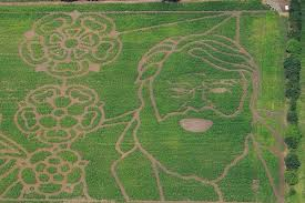 york maze. york-maze-2014-blessed-aerial york maze