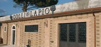 Romano Clelia-Colli di Lapio - CASILLO s.r.l.