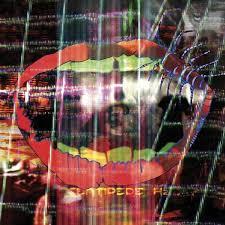 <b>Animal Collective</b>: <b>Centipede</b> Hz Album Review   Pitchfork