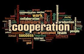 essay on cooperation kind of social interaction cooperation