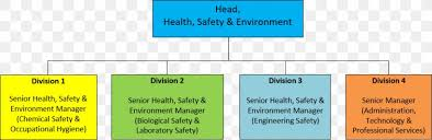 Organizational Chart Hong Kong Polytechnic University