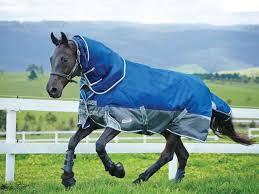 weatherbeeta freestyle 1200d detach a neck heavyweight turnout rug all the best rugs
