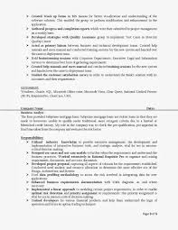 Business Systems Analyst Sample Resume Fair Resume Of A Sap Business Analyst With Additional Business 10