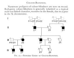 Pedigree Chart Explanation File Charts Pedigree Chart Of Colour Wellcome M0002796