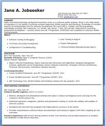 Software Quality Assurance Engineer And Tester Work Experience Certificate   Job offer letter